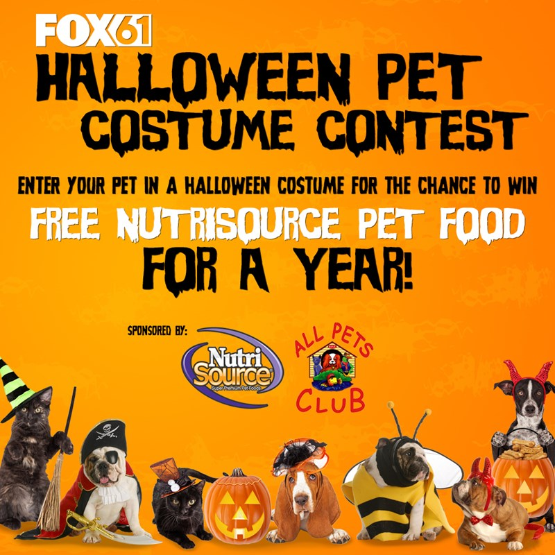 contest information image - Pet Halloween Photo Contest