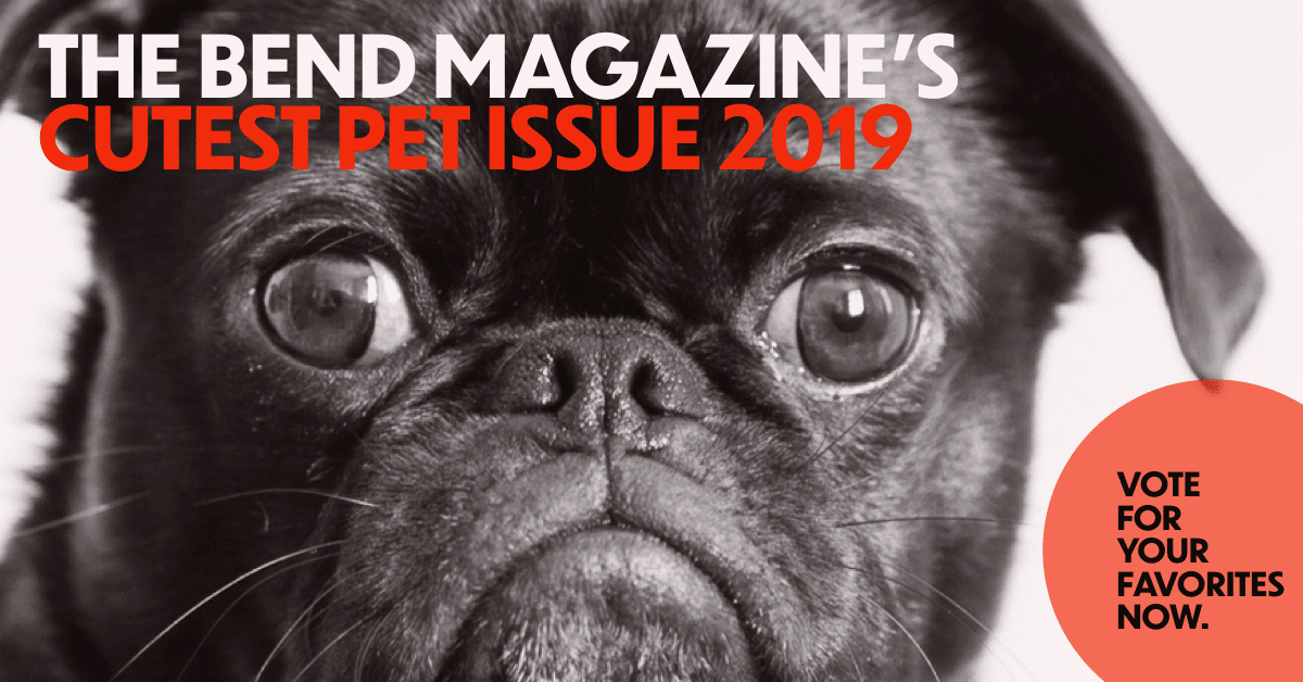 The Bend Magazine's Cutest Pet Issue 2019