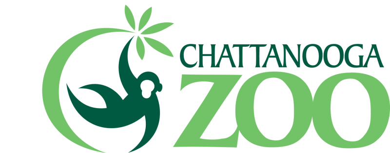 Chattanooga Zoo- Serpents
