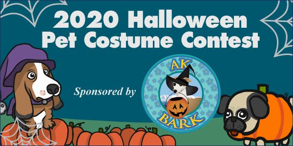 Halloween Costume Contest 2020 Near Me Dog 2020 Halloween Pet Costume Contest