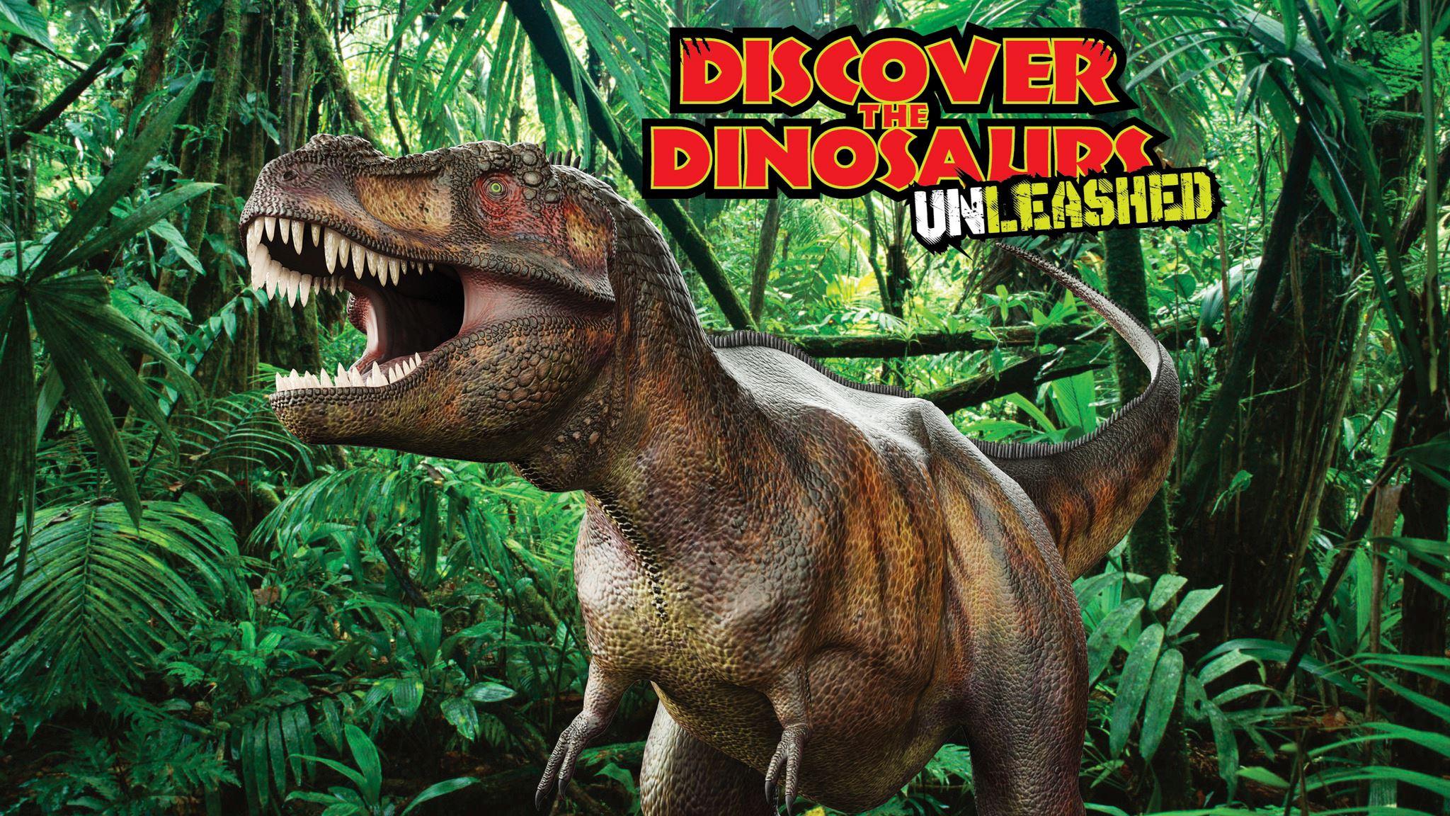 wgno dinosaur trivia contest win tickets to discover the